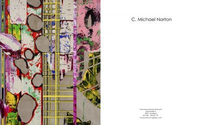 Catalogue Essay for C. Michael Norton Over the top