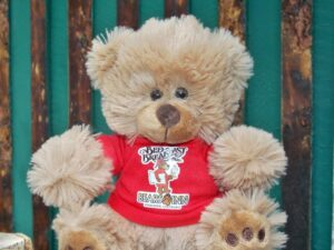 Bears Inn Plush Bear 1