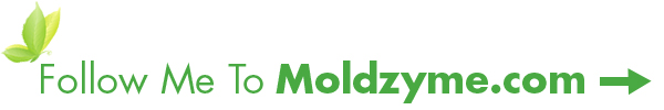 Follow me to Moldzyme.com!