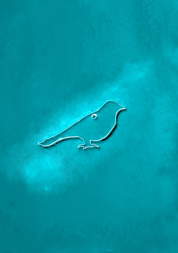 Birdy-1.png