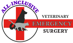 All-Inclusive Veterinary Emergency Surgery - Vaughan Richmond Hill