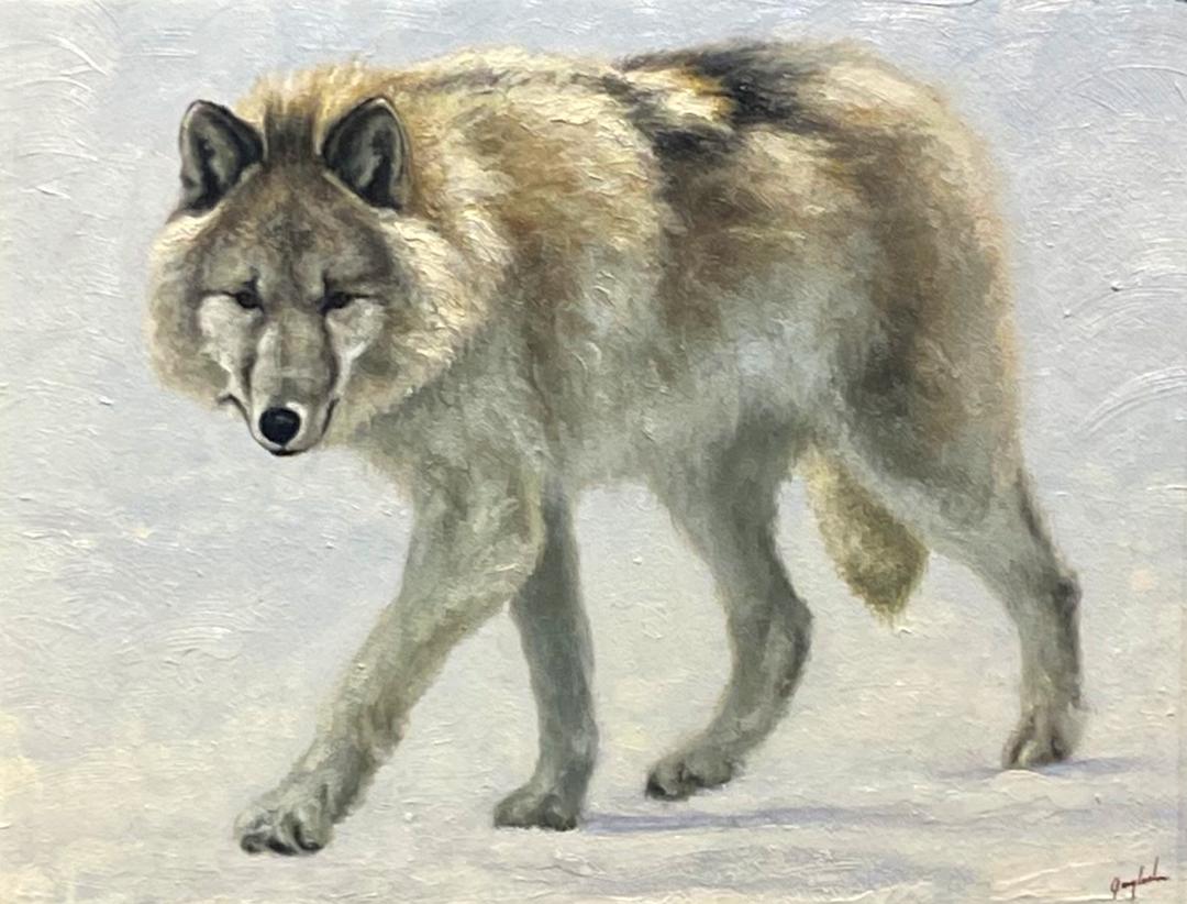 Montgomery-Lee Fine Art | Wolf Study