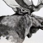 Moose #3