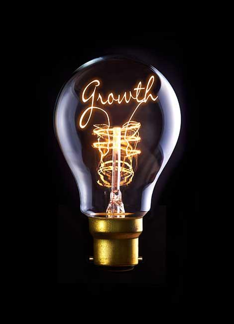 light bulb of growth