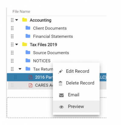dms document viewer