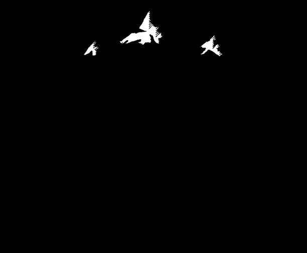 Skookum cycle & ski store logo