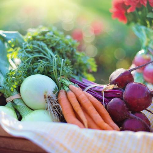 My Top 3 Ways to Use Extra Produce