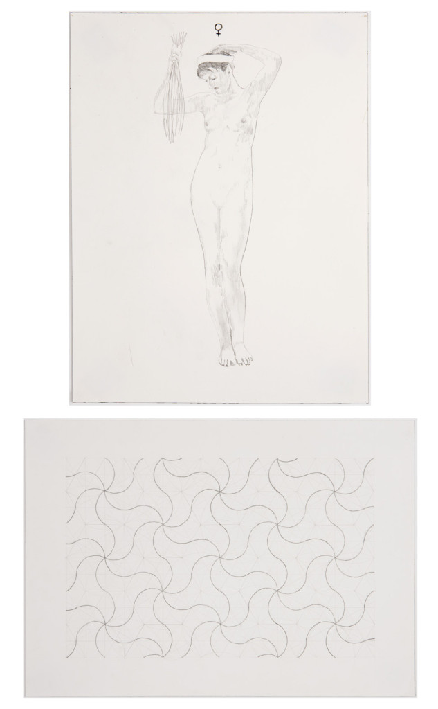 Jesse Bransford, Untitled VI [In Two Parts], Graphite on paper, Curated by Max Razdow and Kari Adelaide, SPRING/BREAK, 2015