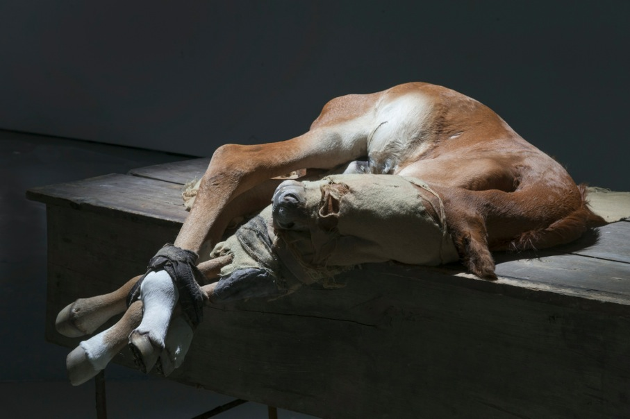 Berlinde De Bruyckere, to Zurbaran, 2015, Installation view, No Life Lost, Image courtesy of Hauser and Wirth, New York, 2016