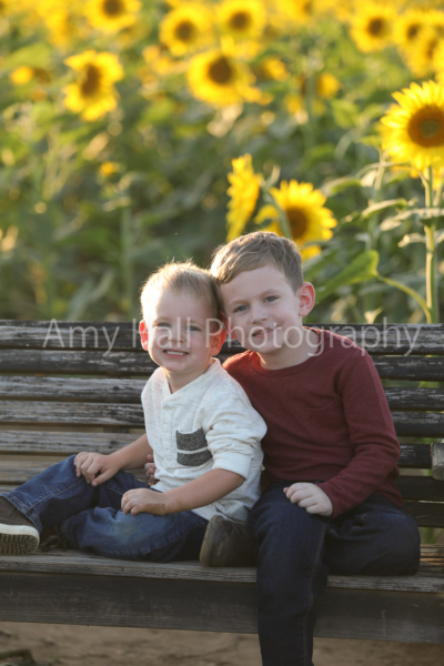 Strong | Sunflower Mini Session
