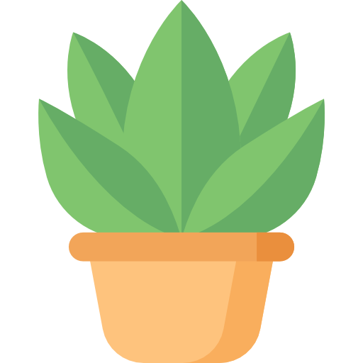 plant in pot, outdoor and indoor landscaping