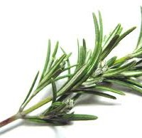 Kitchen Hoodoo | Using Rosemary in Hoodoo, Conjure and Candle Spells