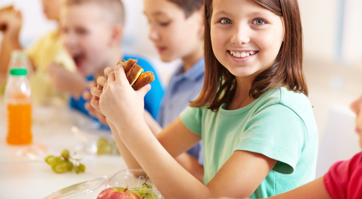 The Real Connection between Nutrition and Learning