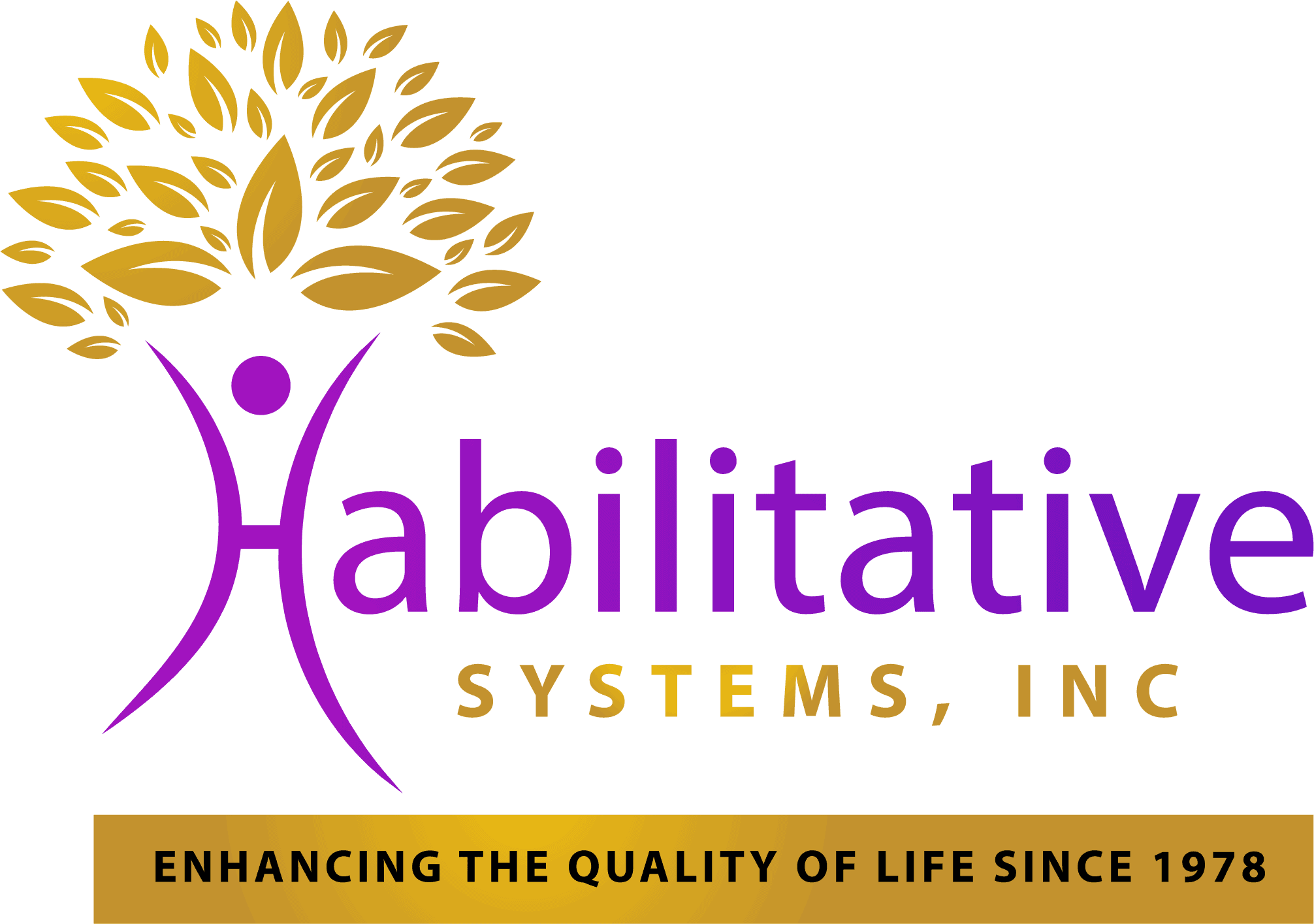 habilitative-systems new logo HSI
