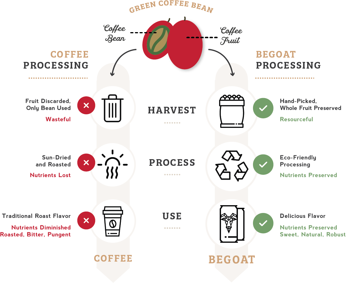 Chart illustrating eco-friendly BeGoat processing of coffee fruit