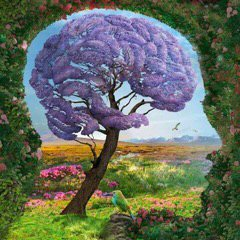 tree-brain-right