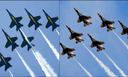 "Thank God For ""The Sound Of Freedom"": Thunderbirds And Blue Angels Salute Frontline Workers"