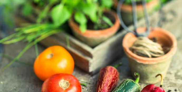 Farm-fresh Herbs & Veggies in the City, Turn Your Balcony into an Edible Garden