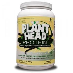 PlantHead_Vanilla-500x500