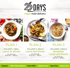 22 day meals