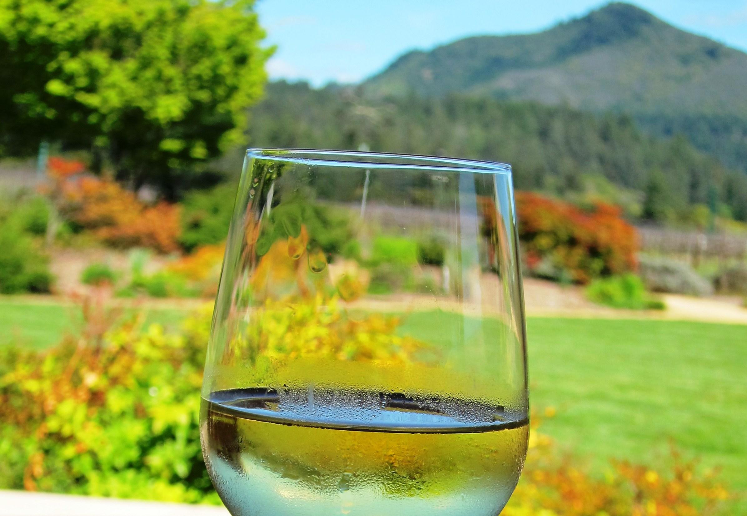Wine gardens
