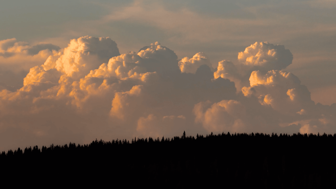 clouds over trees