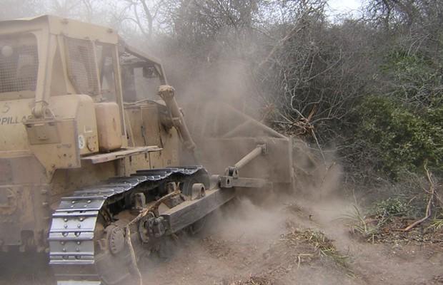 Proyecto REDD de deforestación evitada