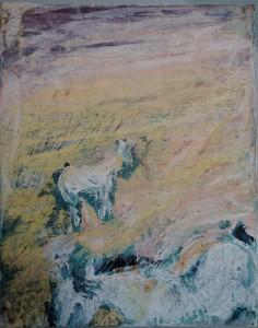 Equine 5
