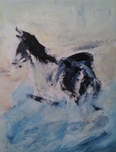 Equine 8