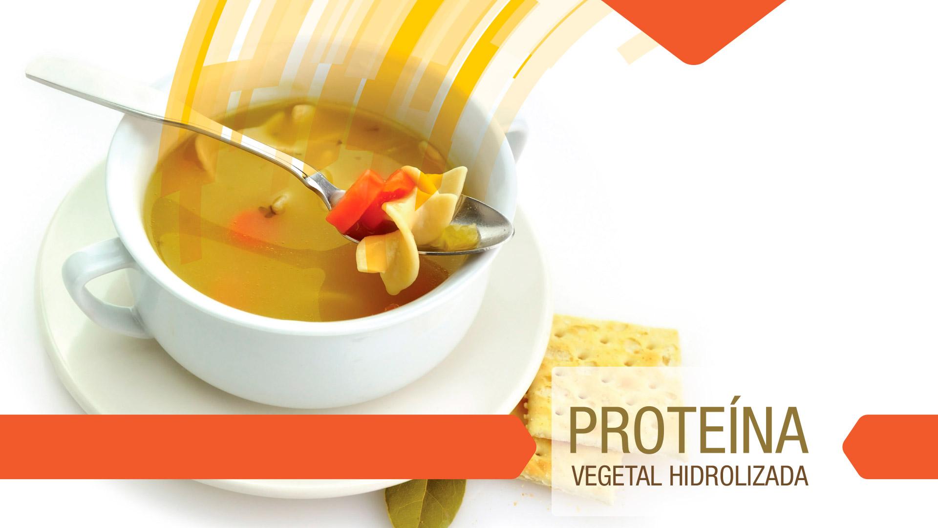 Proteína vegetal hidrolizada
