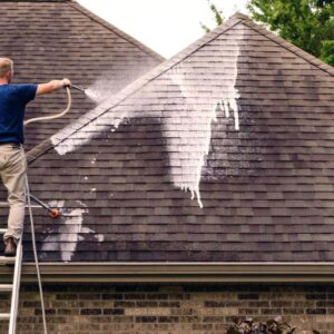 Roof Soft Washing Package