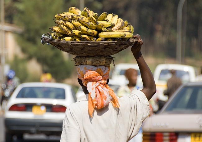 Woman carrying bananas on her head.