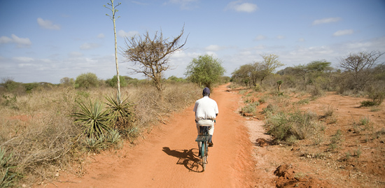 Wide dirt paths connect the sparse homesteads of Kamboo