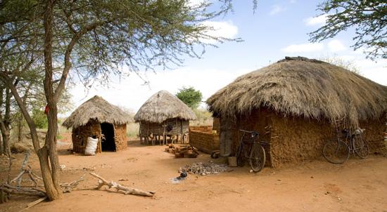 Kamboo homestead