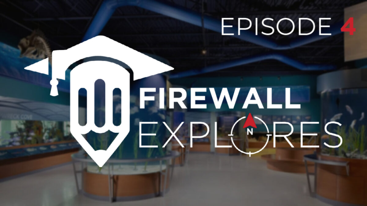 Firewall Goes Under the Sea