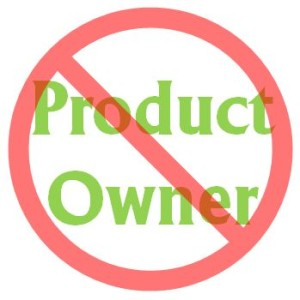 no-product-owner