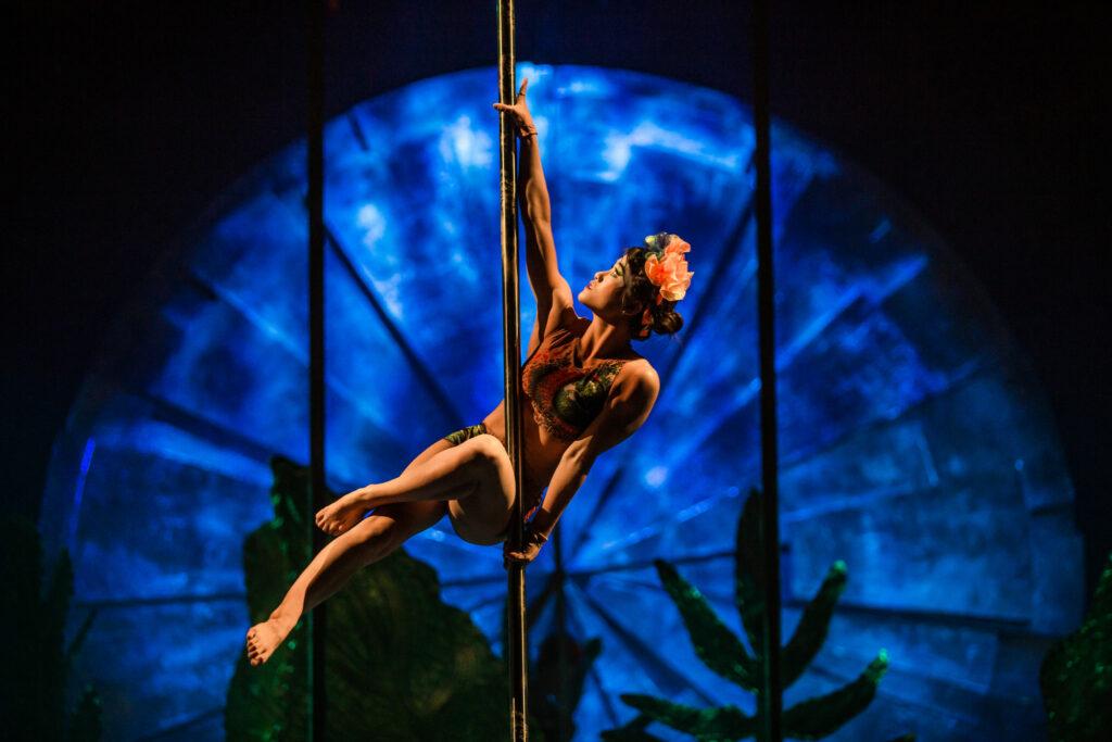 pinup girl on acrobat pole - LUZIA