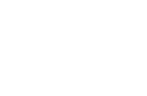 SRP Consulting, Bringing Global Strategy To Small Business
