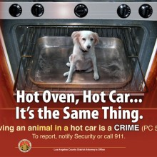 HOT OVEN, HOT CAR…IT'S THE SAME THING.