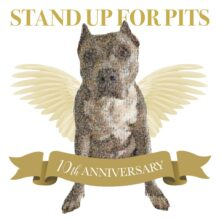 NEW 10 YEAR SUFP ANNIVERSARY VARIETY SHOW AVAILABLE NOW!!!!