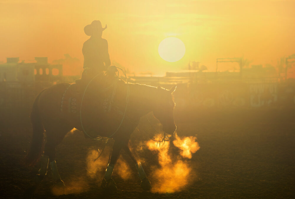 Art of the Cowgirl Mentorships January 13th-17th, 2021