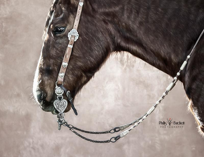 Art of the Cowgirl Phoenix, AZ 2020