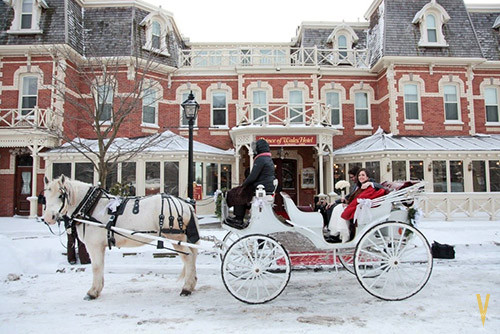 niagara on the lake horse carriage