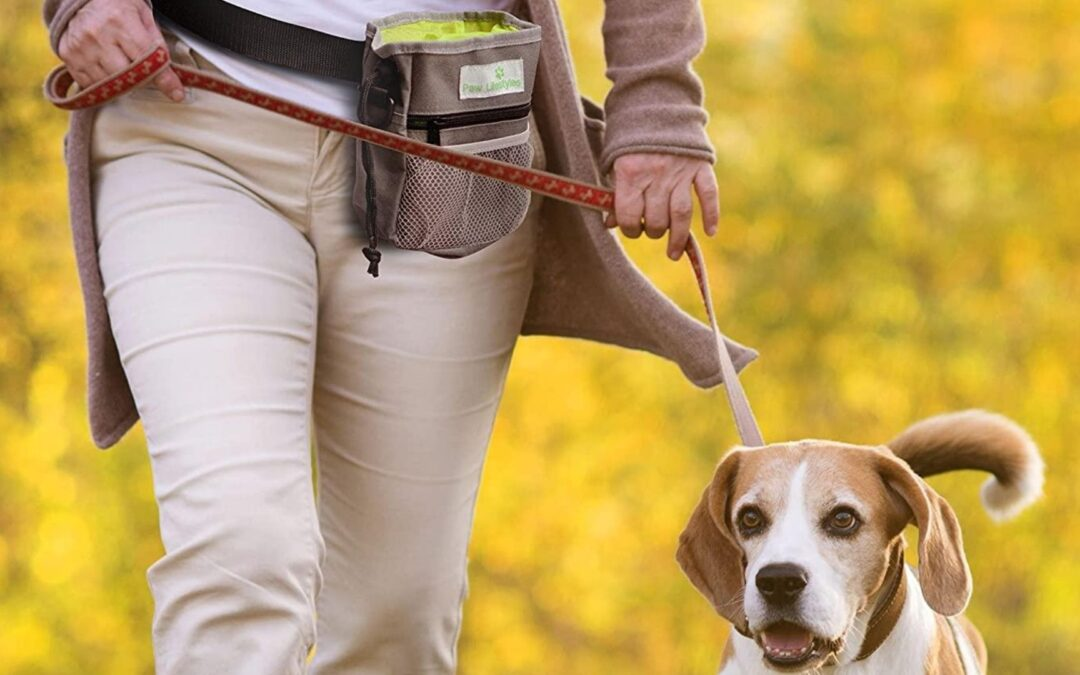 The Perfect Pet Pouch | Paw Lifestyles