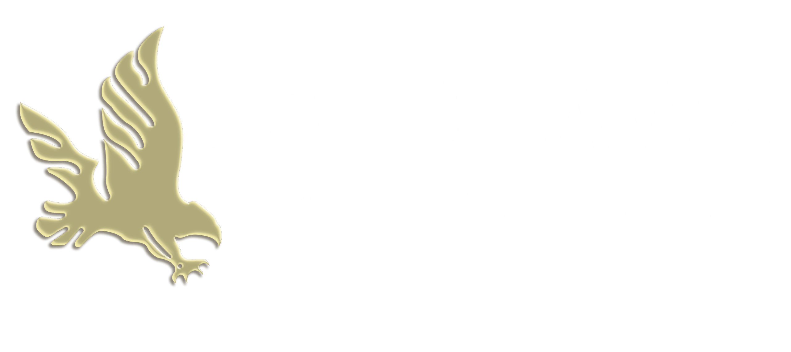 Goldhawk International