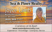 JOYCE LAMB - SEA PINES REALTY EP CDG 2019.jpg