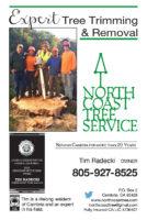North Coast Tree FP CDG 2019.jpg