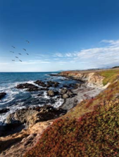 places to stay in Cambria-hotels-Inns-Motels-resorts