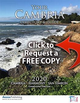 CDG 2020 PDF Flip Book