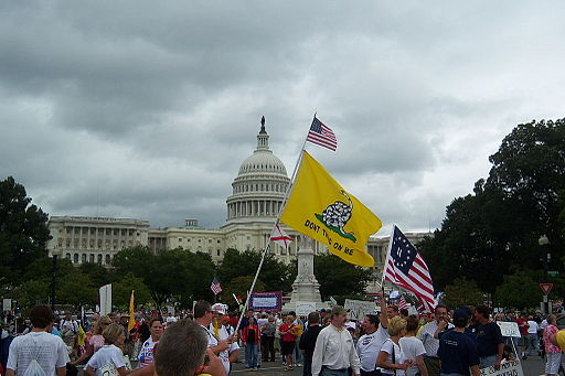 witf Sept_12,_2009_-_Tea_Party_Tax_Payer_Protest,_Washington_DC